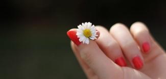 Вълшебна процедура за красиви ръце